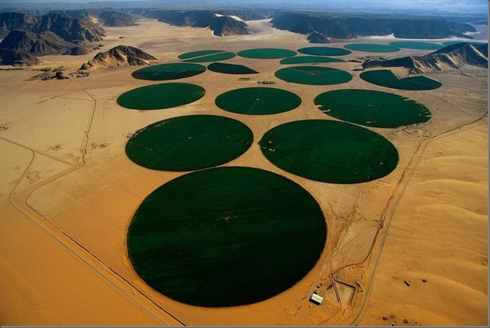 A special system of irrigation in Jordan