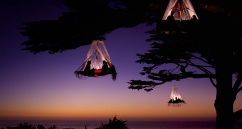 Camping on a tree in Germany