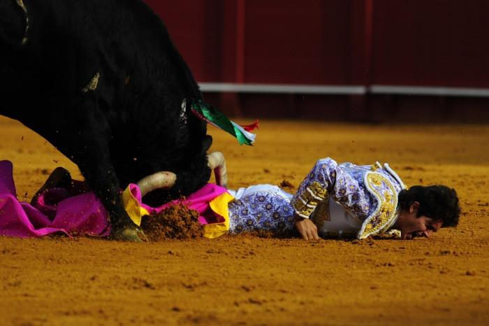 Losing a bullfight