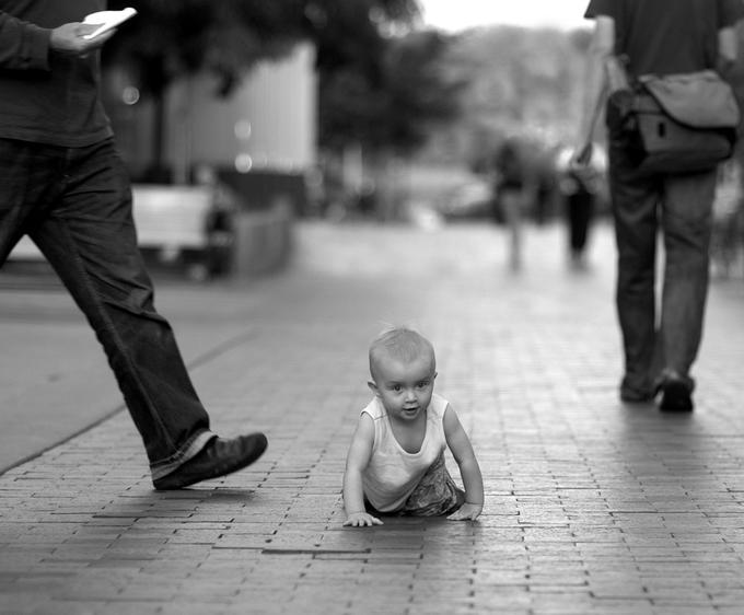 Freedom by Aneta Goska