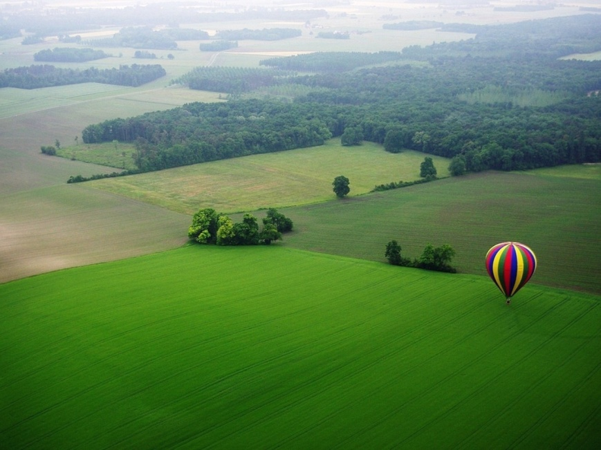 Balloon On Green Ground