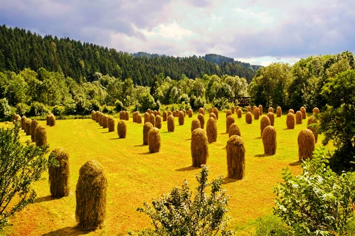 Czech Republic - White Carpathians
