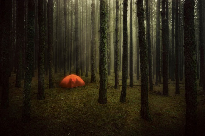 just-a-couple-camping in the forest