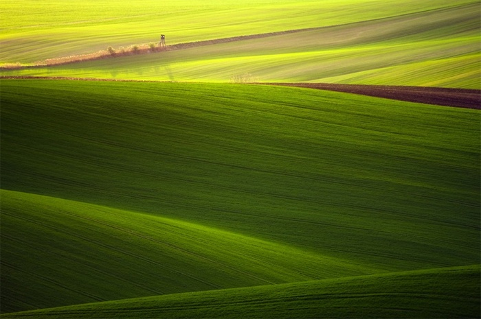 The Proverbial Rolling Hills In South Moravia 3