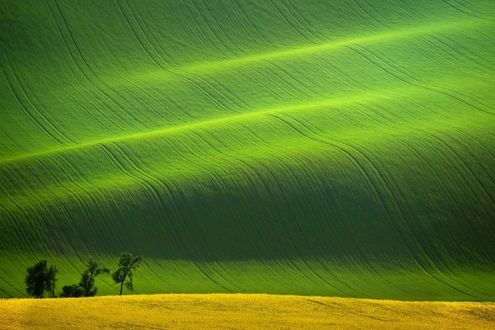 The Proverbial Rolling Hills In South Moravia