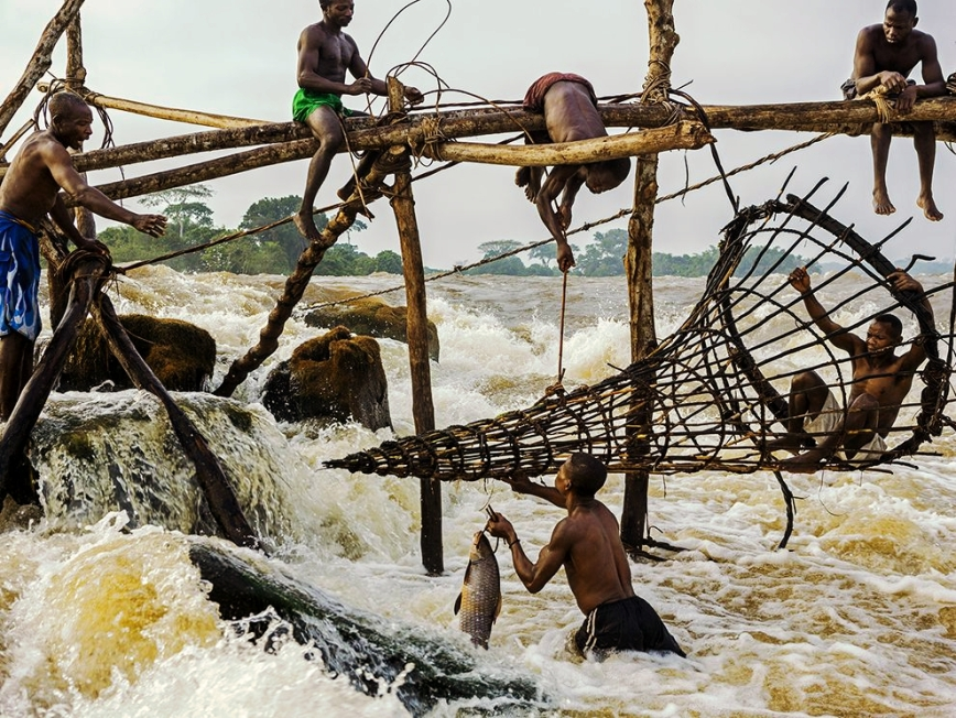In the Democratic Republic of the Congo, Wagenia fishermen still craft enormous traps to snare fish in the roiling rapids outside of Kisangani
